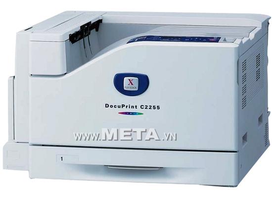 Máy in Laser màu khổ A3 Fuji Xerox DocuPrint C2255
