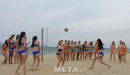 Lưới bóng chuyền bãi biển 442010 phù hợp chơi bóng biển ngoài trời