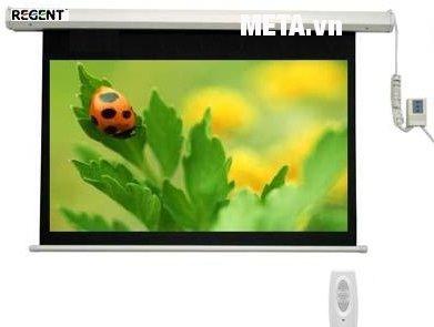 """Hình ảnh màn chiếu điều khiển từ xa Regent 96"""" x 96"""" (2m44 x 2m44)"""