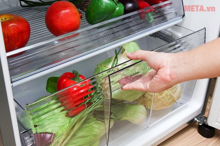 Tủ lạnh Panasonic 234 lít NR-BL267VSVN (267VSV1) với ngăn đựng rau củ riêng biệt.