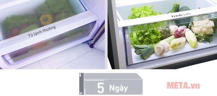 Ngăn chuyên dụng Fresh Safe giữ rau củ tươi đến 5 ngày