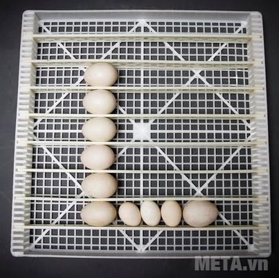 Máy có chức năng diệt khuẩn nhờ tia UV