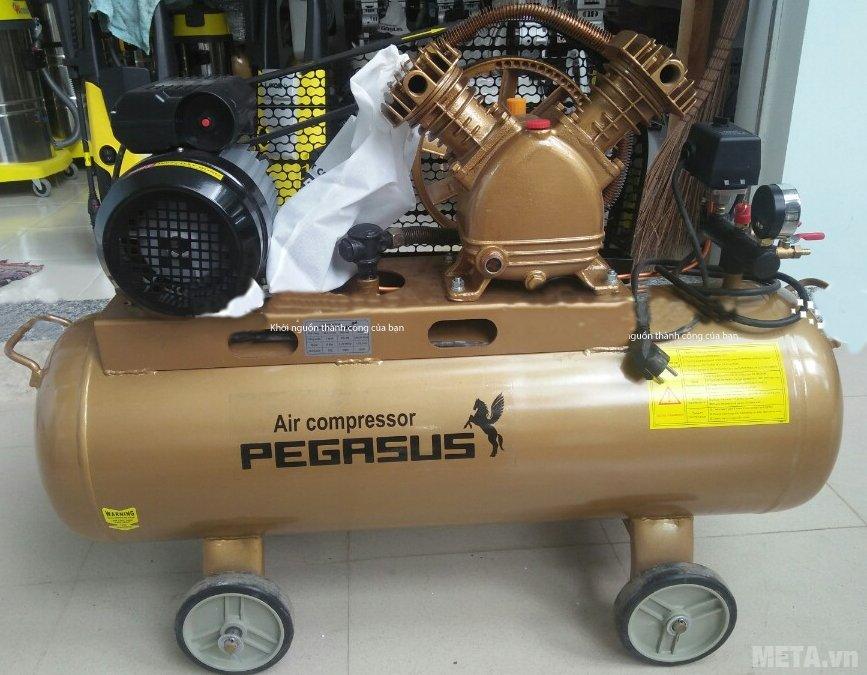Máy nén khí Pegasus TM-V-0.17/8 (2HP) màu đồng