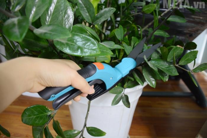 Ngoài khả năng cắt cỏ kéo có khả năng cắt tỉa cây cảnh