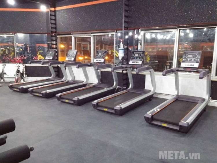 Máy chạy bộ BOFIT X8 có tải trọng lên đến 150kg
