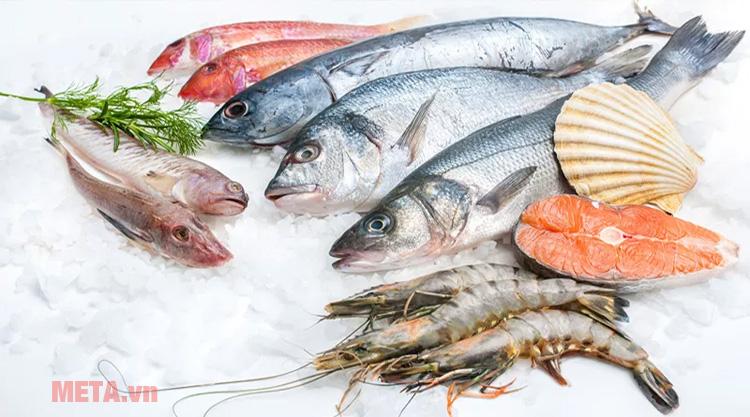 Tủ đông Kadeka KCFV-850SA giúp bảo quản tốt các thực phẩm thịt, cá