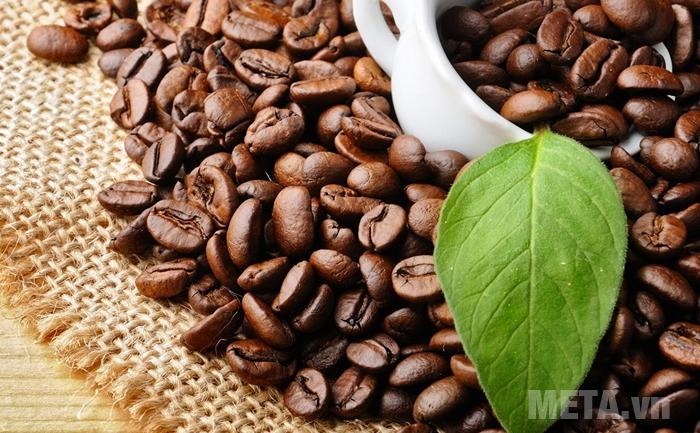 Máy xay cà phê Cloer 7589 bền bỉ, mạnh mẽ