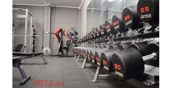 Giá để tạ tay chuyên nghiệp tại phòng tập gym