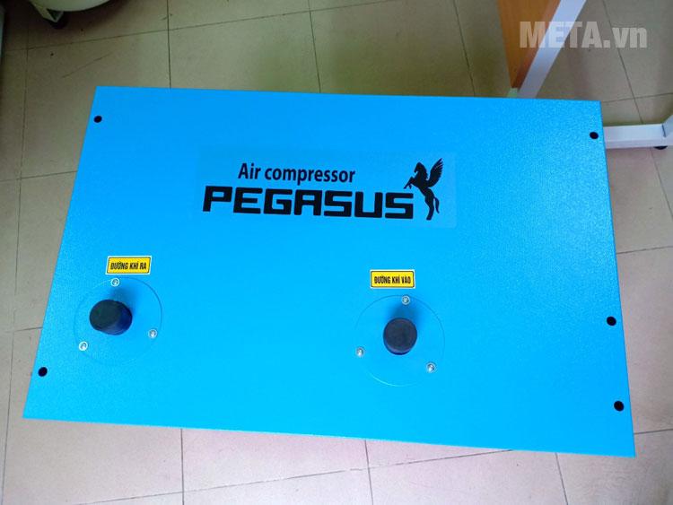Máy sấy khí Pegasus