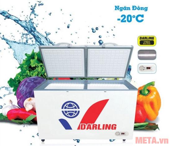 Tủ đông DMF-8779AX