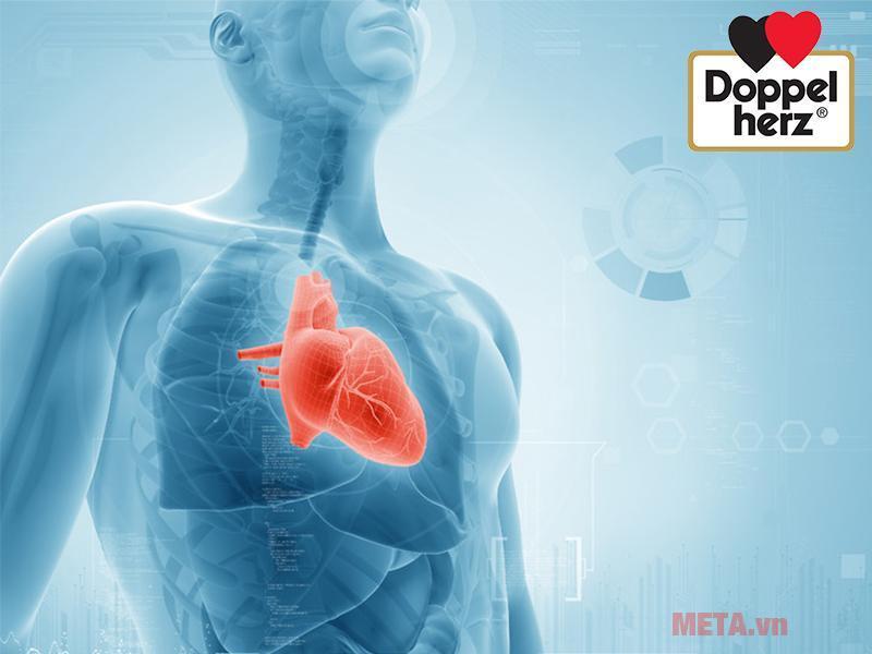 Thực phẩm tăng cường sức khỏe tim mạch Doppelherz Aktiv Coenzyme Q10 (30 viên)