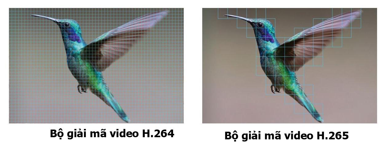 Camera Ezviz hỗ trợ bộ giải mã H.265 hiện đại