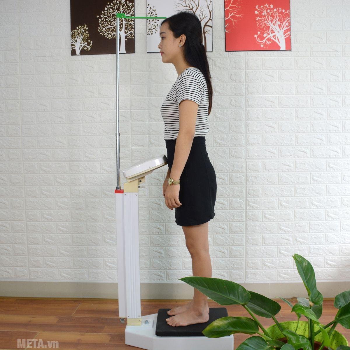 Cân Horse head Tz120 tích hợp đo chiều cao và cân nặng