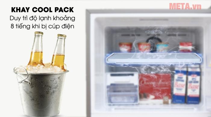 Tủ lạnh Samsung Inverter RT43K6331SL/SV giữ thực phẩm luôn tươi mới
