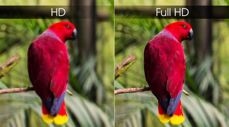 Sự khách biệt khi hình ảnh được truyền tải qua kênh HD và Full HD