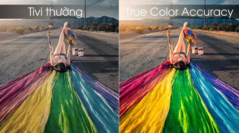 Màu sắc tinh tế, sắc nét đến từng chi tiết
