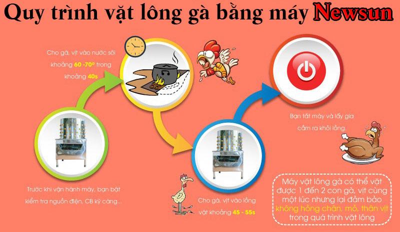 Quy trình hoạt động của máy vặt lông gà