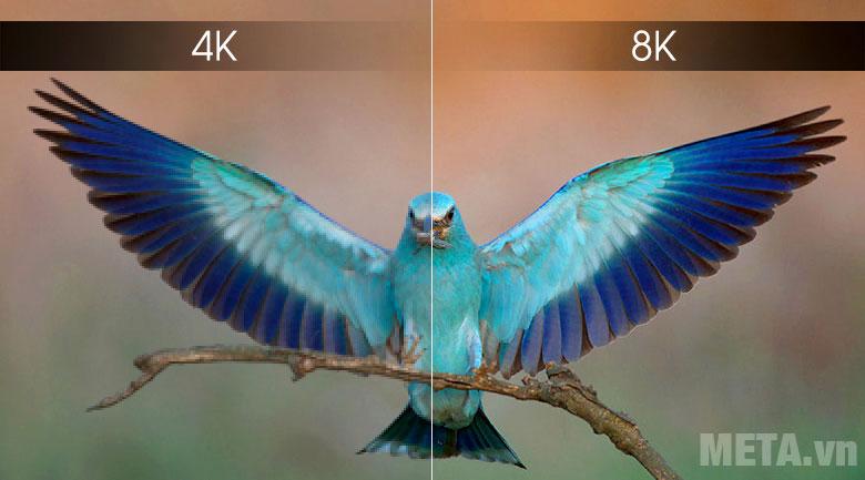 Smart Tivi QLED Samsung 8K