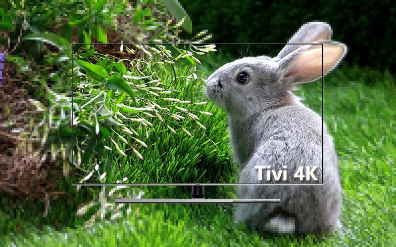 Tivi trang bị độ phân giải 4K cực sắc nét, hiện đại