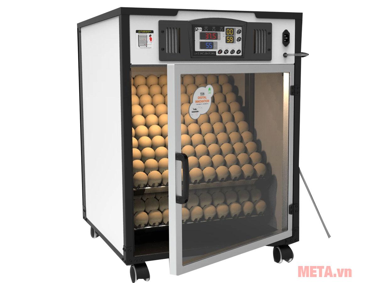 Máy ấp trứng Delta H2