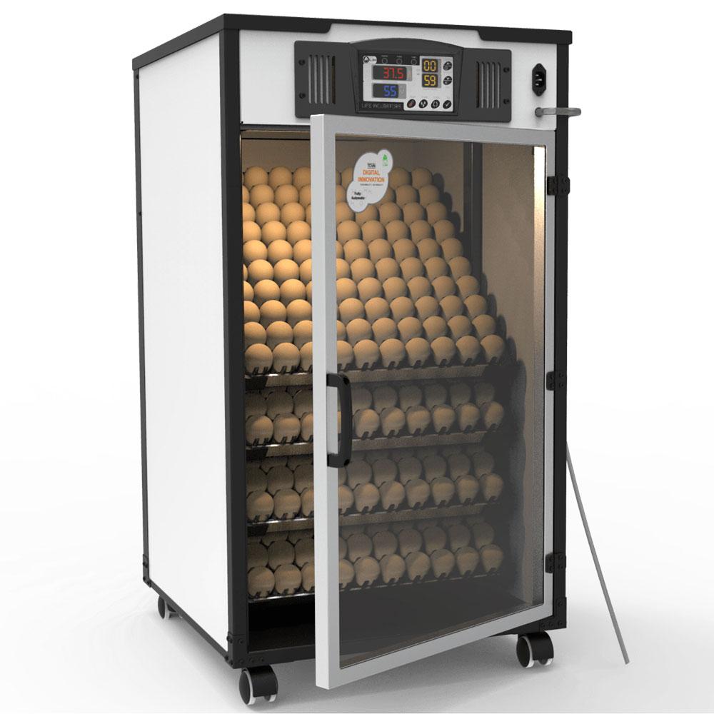 Máy ấp trứng 4 khay có khả năng ấp 400 trứng
