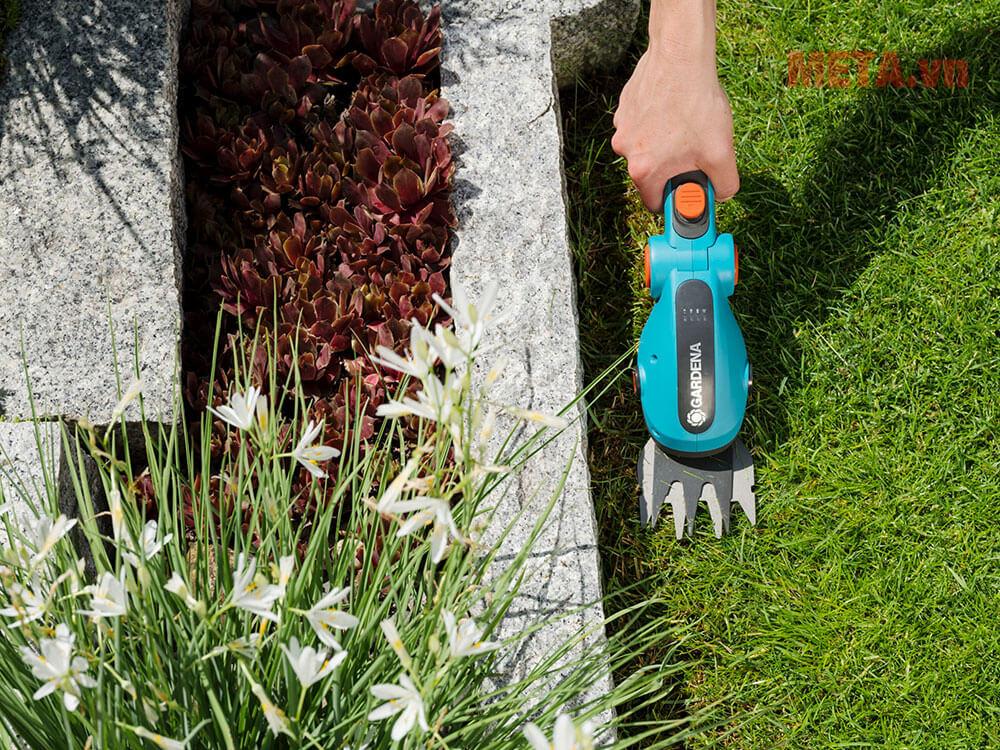 Máy cắt cỏ sân vườn