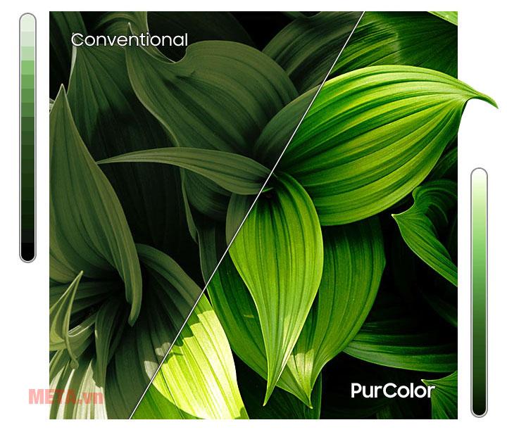 Công nghệ PurColor tái hiện màu sắc chân thực