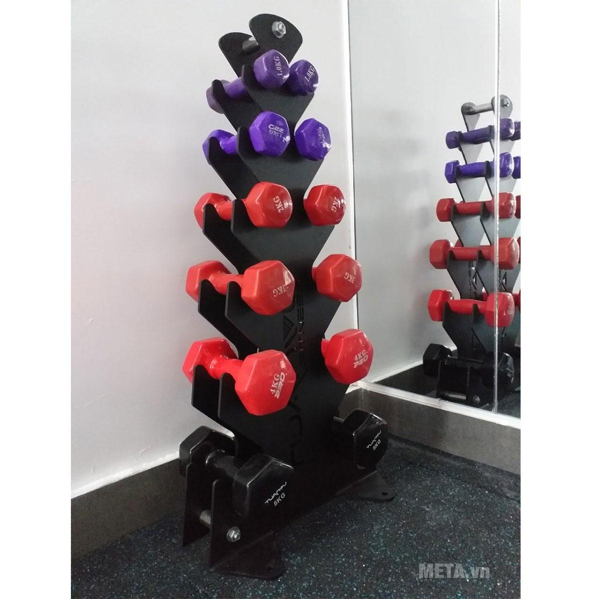 Giá để tạ mini TV6012A dùng cho phòng gym