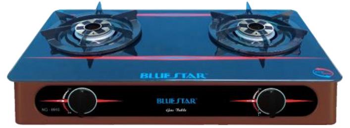 Bếp ga đôi Bluestar NG-6910