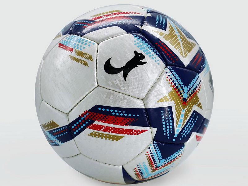 Quả bóng đá số 5