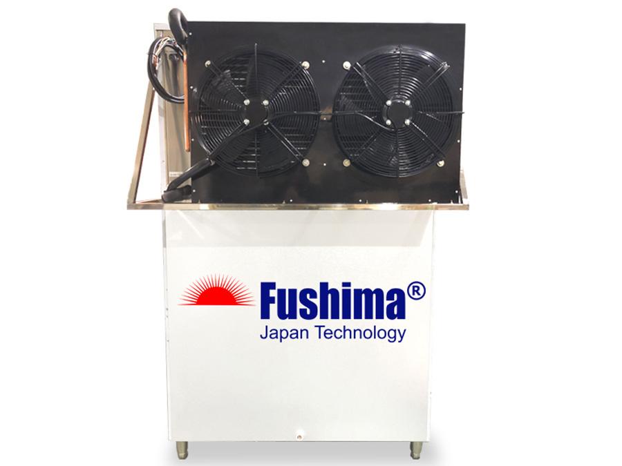 Fushima FSM 300