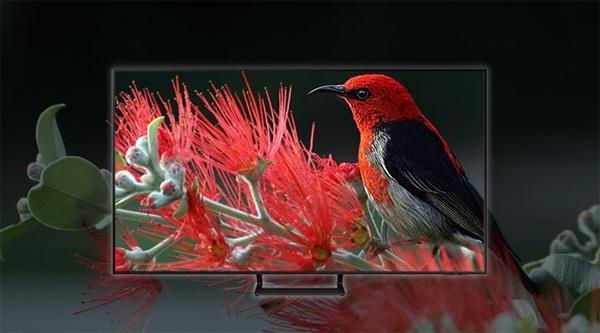 Smart Tivi Samsung Crystal UHD 4K 43 inch