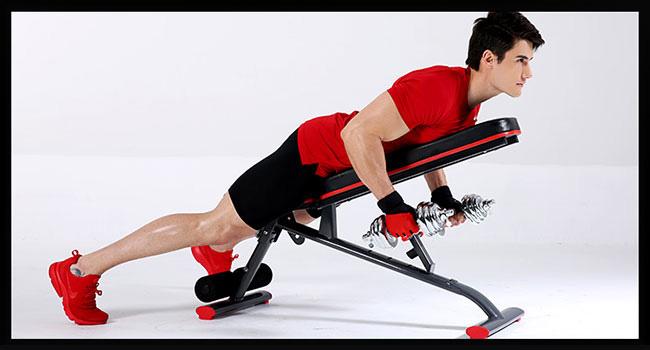Phát triển cơ lưng