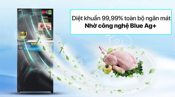 Tủ lạnh Panasonic NR-TV261BPKV