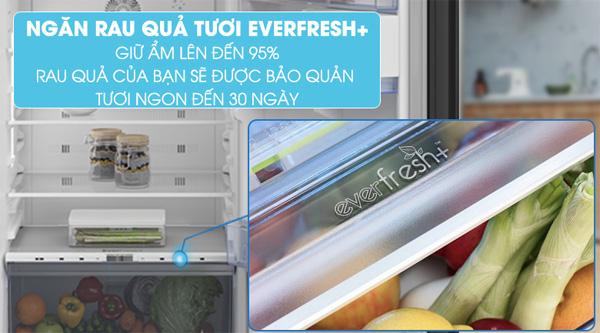 tủ lạnh Beko 558 lít