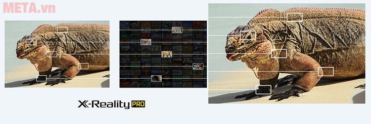 X-Reality Pro nâng cao chất lượng hình ảnh