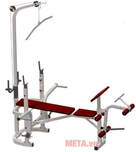 Ghế tập Multy Ben 501B (601521) sẽ mang lại cho bạn một thân hình nở nang và săn chắc hơn.