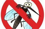 Cách đuổi muỗi ra khỏi nhà phòng chống sốt xuất huyết
