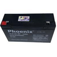Ắc quy Phoenix 6V 12AH TS6120