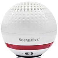 Loa bluetooth di động SoundMax R-100