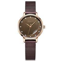 Đồng hồ nữ Julius Hàn Quốc JA-1179 dây thép