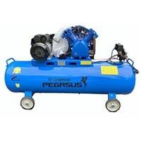 Máy nén khí Pegasus TM-V-0.25/12.5