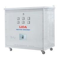 Biến áp đổi nguồn hạ áp 3 pha LiOA 100KVA - 3K102M2YH5YT (tự ngẫu)