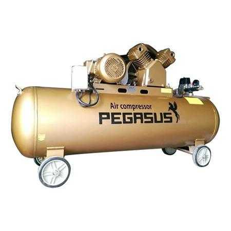 may nen khi pegasus tm v 0 6 8 330l 5 5hp