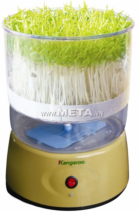 Máy trồng rau mầm KG-262 cho thời gian thu hoạch nhanh với năng suất cao.