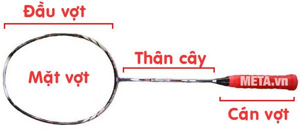 Thành phần vợt cầu lông