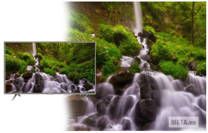 TCL trang bị độ phân giải HD cho hình ảnh đẹp, màu sắc rực rỡ.