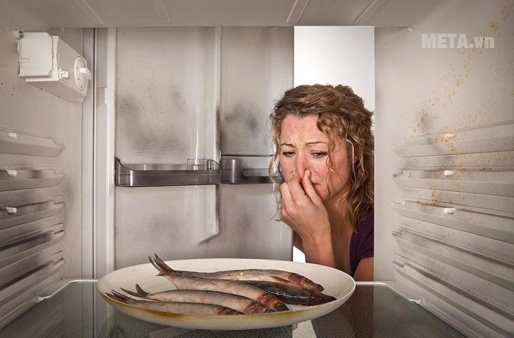 Tủ lạnh có mùi hôi khó chịu.
