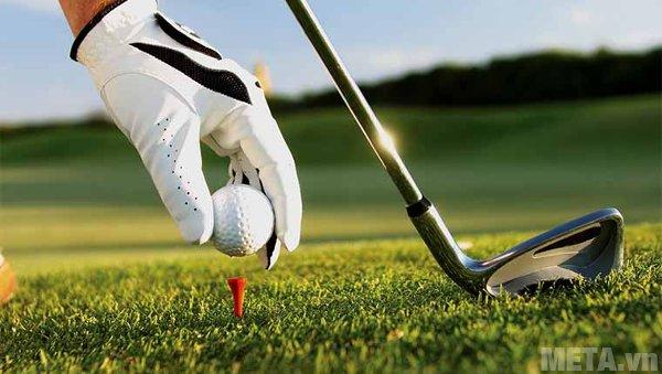 Lựa chọn gậy golf là việc khá khó khăn với những người mới bắt đầu
