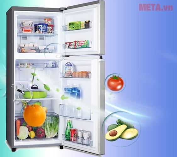 Tủ lạnh có thiết kế sang trọng, đẹp mắt